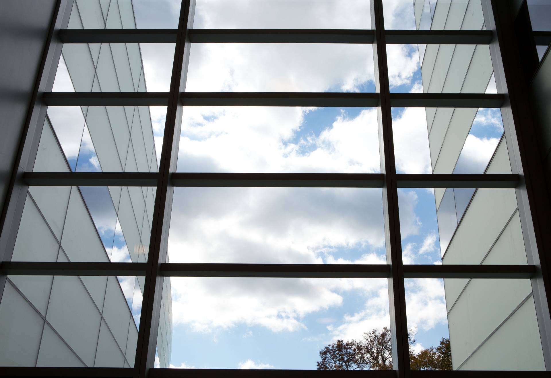 Photo of the sky as seen through windows of the Princeton neuroscience building.